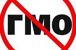 Сыворотка Нано Ботокс не содержит ГМО